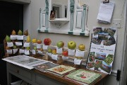 Display of apples and pears